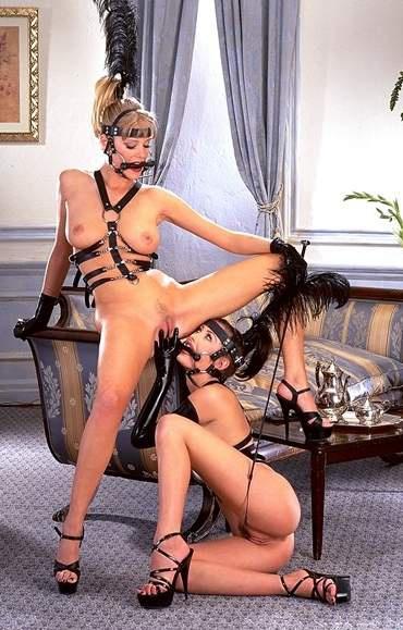 Порно попки задниц фото